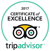 Certificate of Excellence 2017 Image